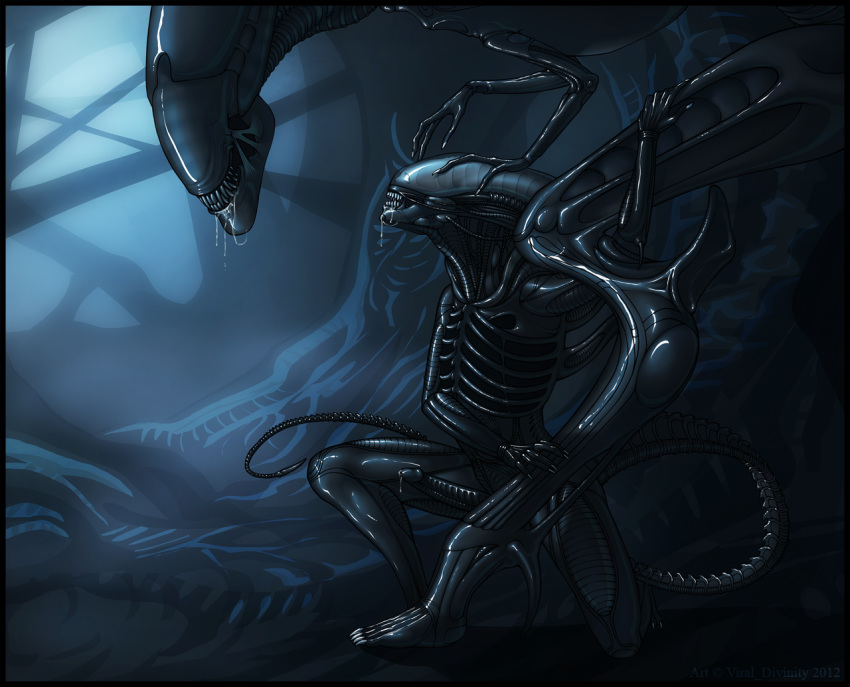queen xenomorph fanfiction human and How to get to crossbreed priscilla